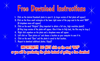 Free Download Instructions final