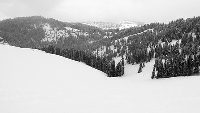Grand Targhee / Alta, Wyoming