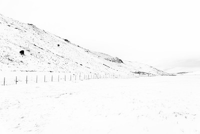 National Elk Refuge / Jackson, Wyoming