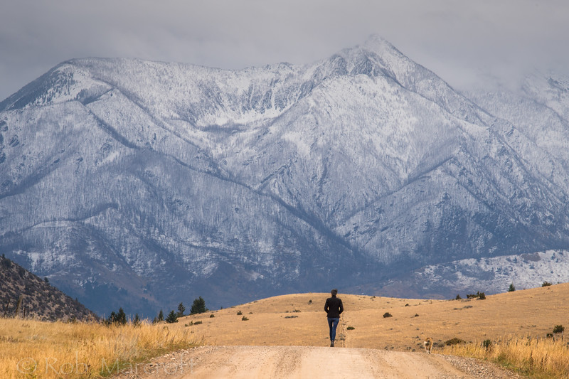 Absaroka Mountains Walk