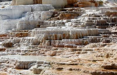 Mammoth Hot Springs III