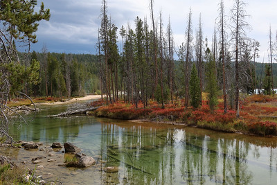 We had received a few drops of rain at lunch, but nothing serious, so when we returned to camp, we went out for another walk.  This is the outlet stream for Redfish Lake