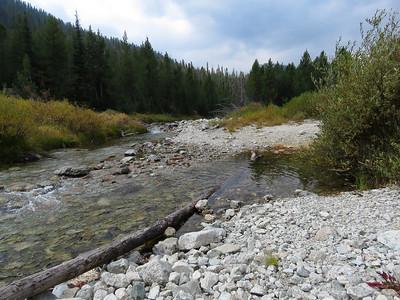 Alpine Creek.