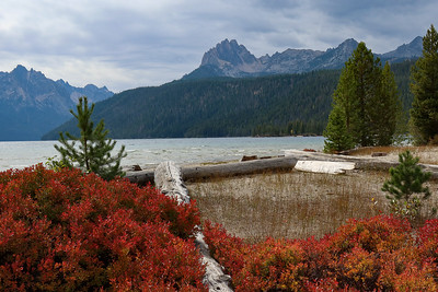 The lake itself with some surrounding colors.