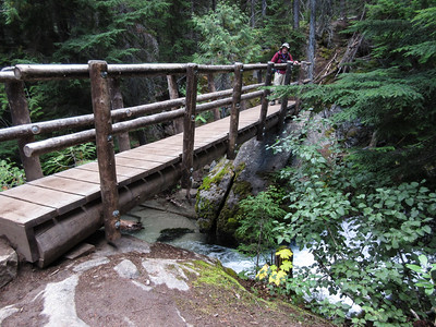 The trail climbs thru dense forest and crosses Mountaineer Creek on a very sturdy bridge
