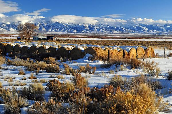 Western Range