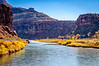 The Gunnison River near the Doninguez Canyon Wilderness, Colorado