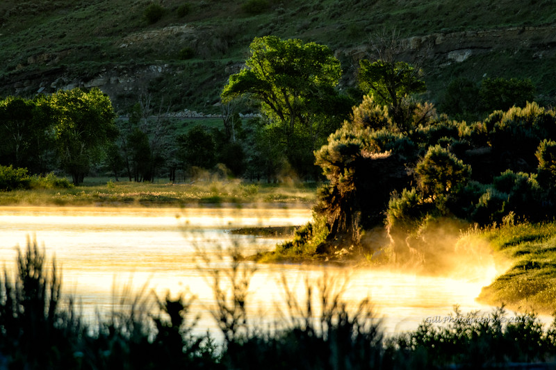Mist rising off of the Yampa as the sun's first light hits the river.