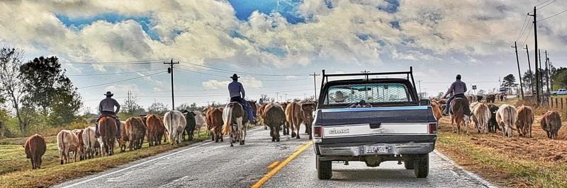 Texas Roads
