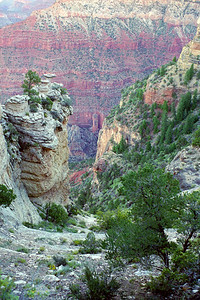 Grand Canyon National Park- Mather Point, Arizona