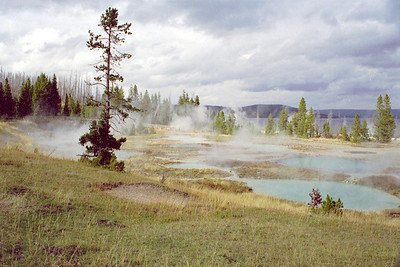 West Thumb Geyser Basin Thermal Gardens, Yellowstone National Park, Wyoming