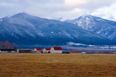 Cattle ranch in the Bitterroot Mountains near Stevensville, Montana