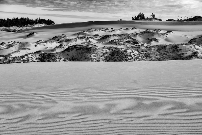 OregonDunes07-23-2015-15-Edit