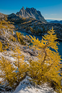 Larches and Prusik Peak
