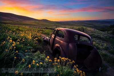 Dalles Mountain Ranch Sunrise