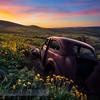 Dalles Mountain Ranch Sunrise