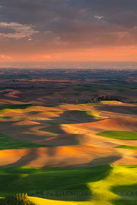 Ribbons of Light, The Palouse