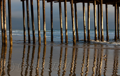 Pismo Beach Wharf Reflection