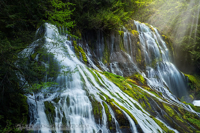 Private Paradise - Panther Creek Falls, Washington, USA