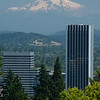 Mt. Hood appears to float above the Portland skyline.