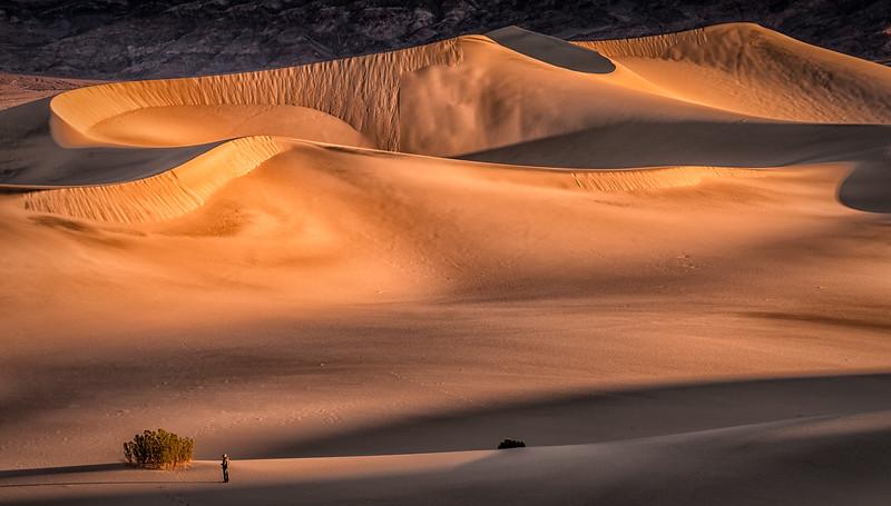 Dawn at Mesquite Dunes