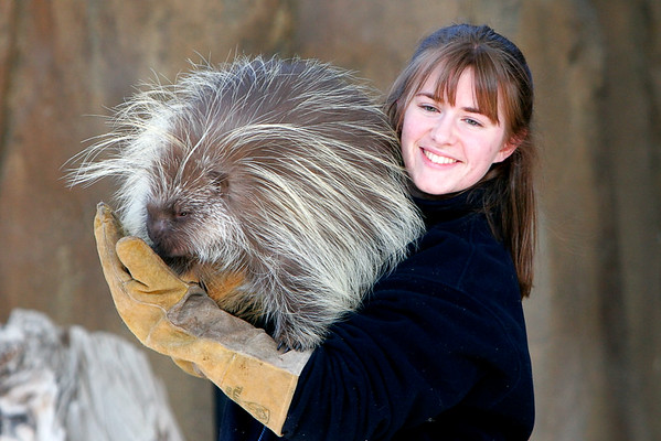 Porcupine and handler