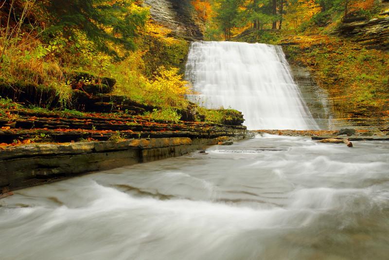 Image #8979<br /> Stony Brook State Park, Western N.Y.