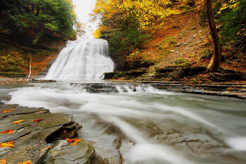 Image #8922<br /> Stony Brook State Park, Western N.Y.