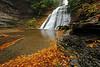 Image #1146<br /> Stony Brook State Park, Western N. Y.