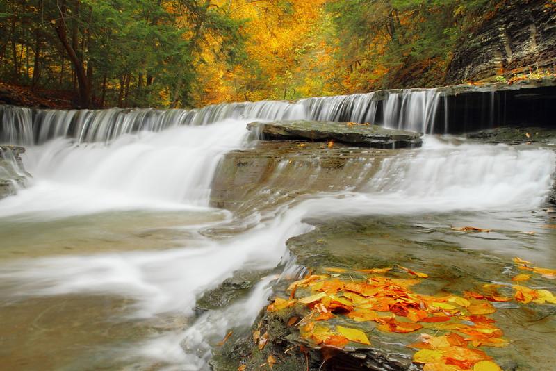 Image #8958<br /> Stony Brook State Park, Western N.Y.