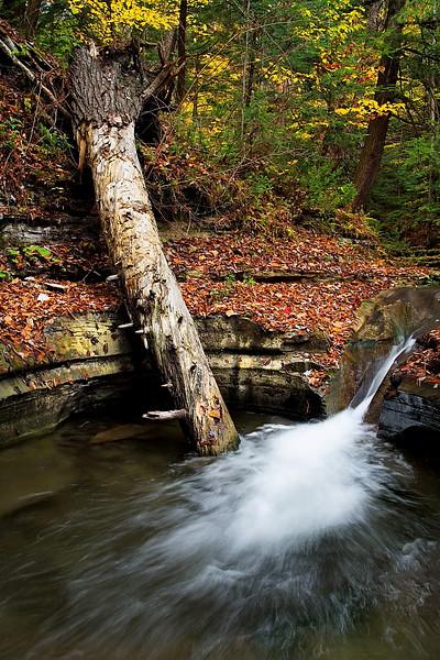Image #397<br /> Sugar Creek  Glen ~ Western N.Y.