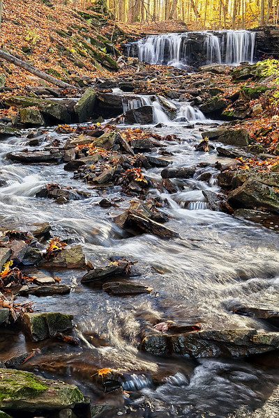 """AUTUMN'S BROOK"""