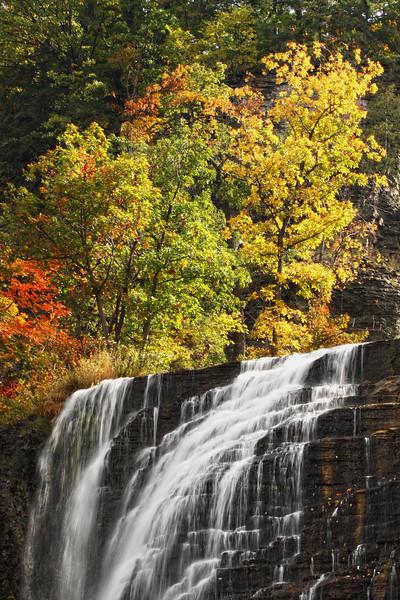 Image #3623<br /> Ithaca Falls, Central N.Y.