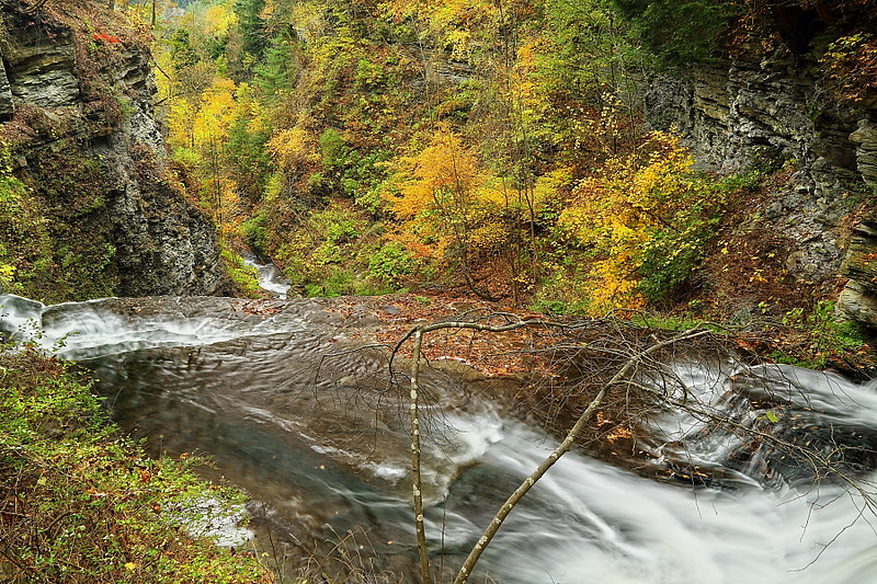 Image #552<br /> Letchworth State Park ~ Western N.Y.