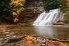 Image #1184<br /> Stony Brook State Park, Western N. Y.