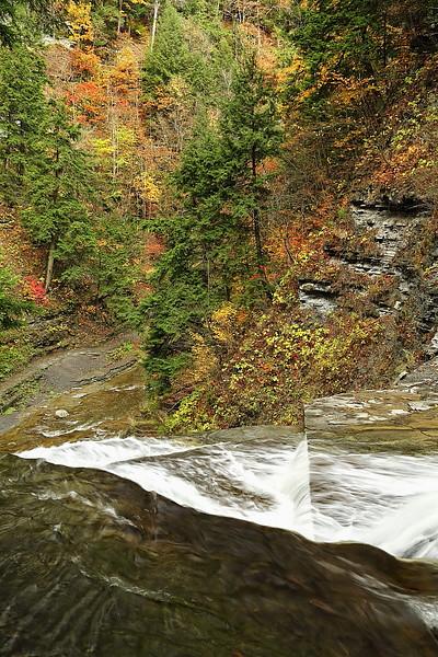 Image #469<br /> Stony Brook State Park ~ Western N.Y.