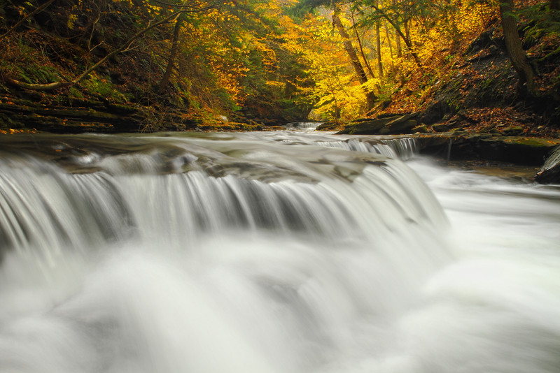 Image #9060<br /> Sugar Creek Glen, Western N.Y.