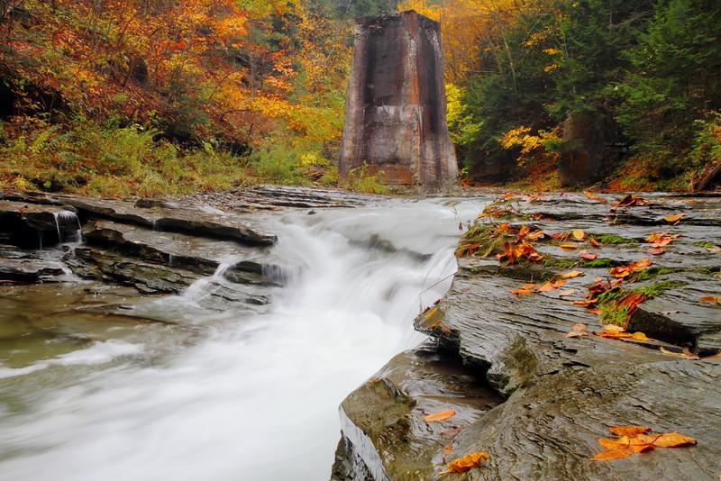 Image #8997<br /> Stony Brook State Park, Western N.Y.