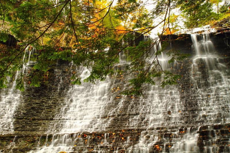 Image #9081<br /> Sugar Creek Glen, Western N.Y.