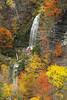 Image #497<br /> Letchworth State Park ~ Western N.Y.