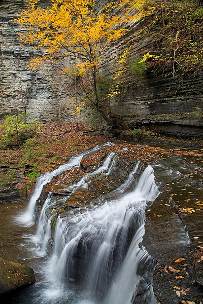 Image #277<br /> Buttermilk Falls State Park ~ Central N.Y.