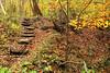 Image #506<br /> Letchworth State Park ~ Western N.Y.