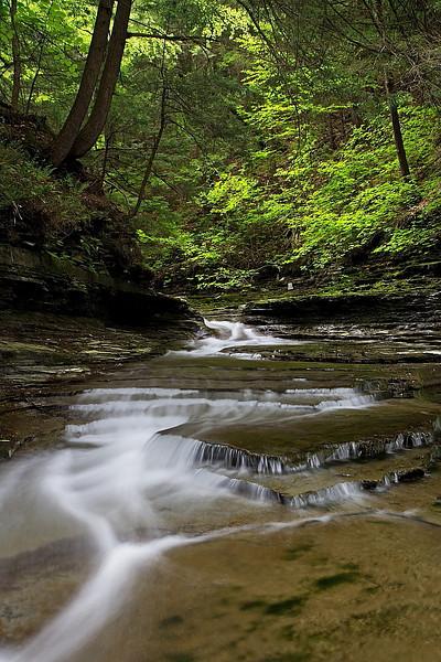 Image #6213<br /> Sugar Creek Glen, Central N. Y.