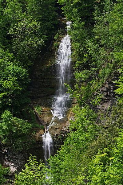 Image #6255<br /> Letchworth State Park, Western N. Y.