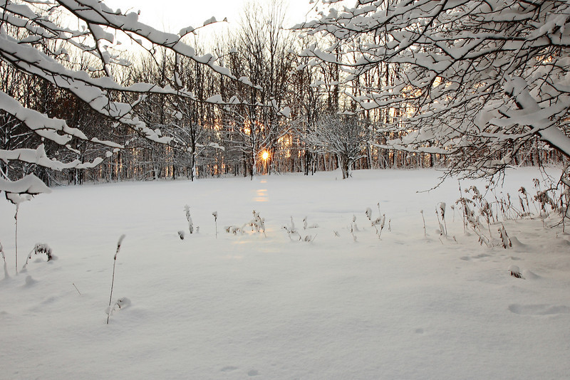 Image #4914<br /> A winter sunrise in Franklinville, Western N. Y.