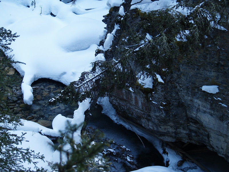 Banff and Johnston Canyon 032.JPG