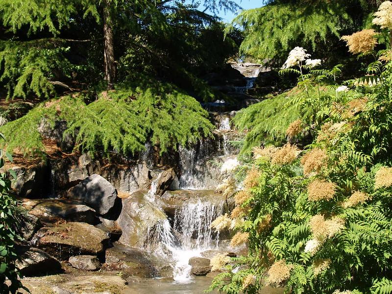 Waterfall at Van Dusen (2006).