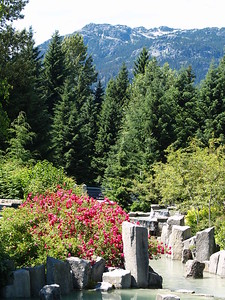 Whistler, BC - a little glacier-fed stream. The green color comes from the silt in the water (2006).