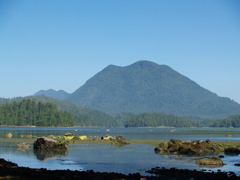 The difference between film and digital is immense. The previous shot was on film. The next few photos of a morning trip to Meares Island are all digital. This is Lone Cone Mountain from the mud flats. The tide had started to turn to come in so I could still walk out on the flats for a few shots. (2009)