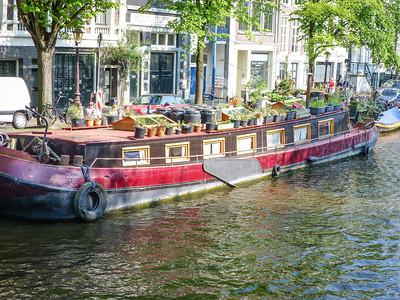 Amsterdam Jordaan Walk